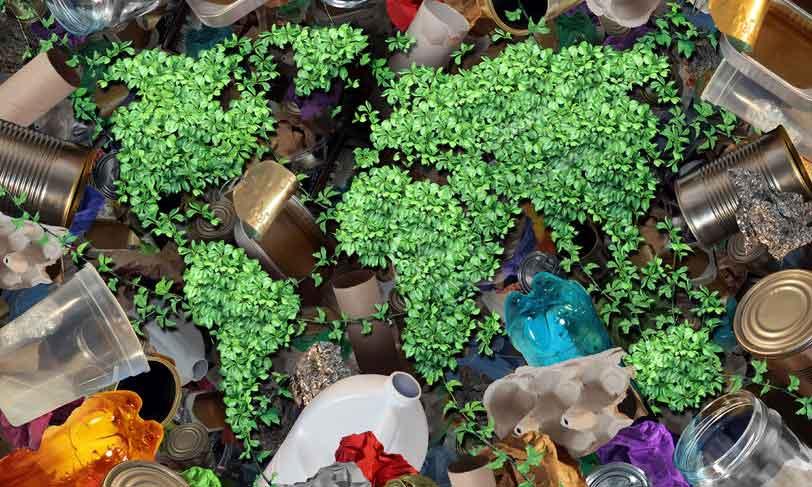 Rajapack zorgt voor duurzame verpakkingen waarmee je je producten en het milieu beschermt