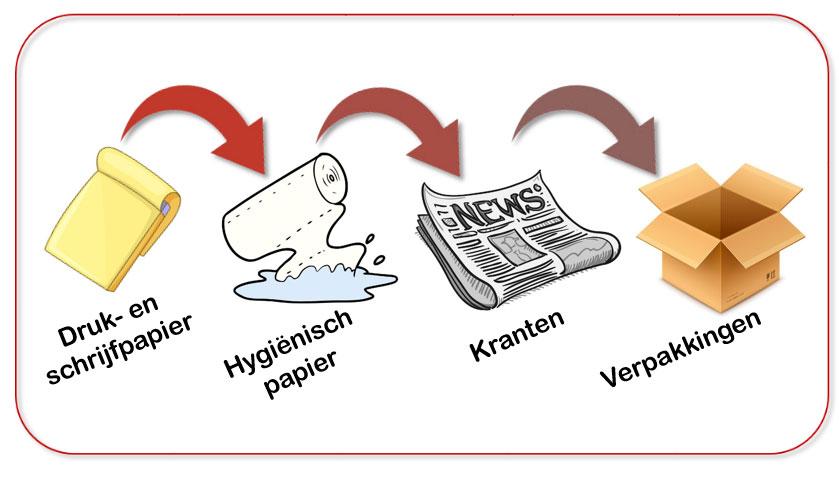 De recyclingcyclus van karton en papier